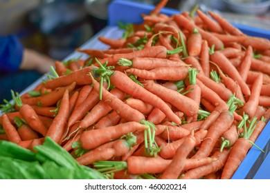 Carrot food background