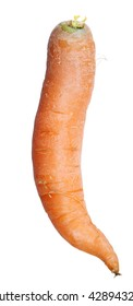 Carrot isolated on white with clipping path