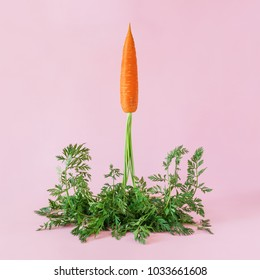Carrot  launches like a rocket on pink background. Easter minimal concept.