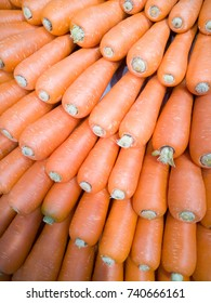 Carrots arranged in rows on displayed under spot light.