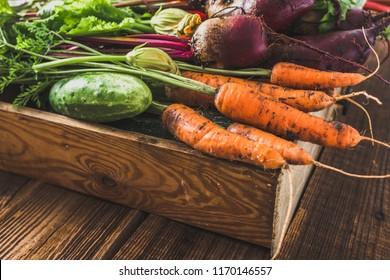 Carrots and assorted vegetable harvest, fresh organic vegetables, garden produce on farmer market. Wooden box on table.