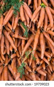 Carrots at farmers market