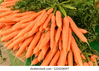 carrots heap on sale at Saturday market, shot in bright cloudy light at Ludwigsburg, Germany
