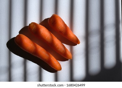 Carrots in natural light on background
