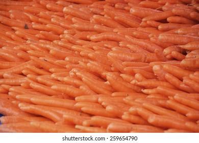 carrots on market