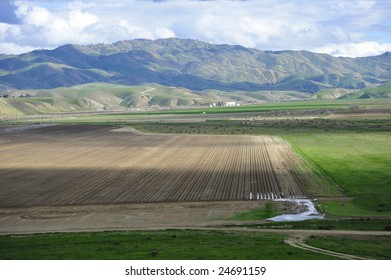 Carrots and onions alternate in this field near the Southern Sierra Nevada Range, California