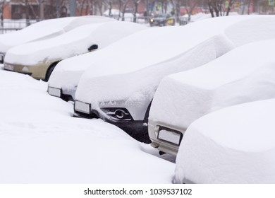 Cars completely covered with snow on parking.