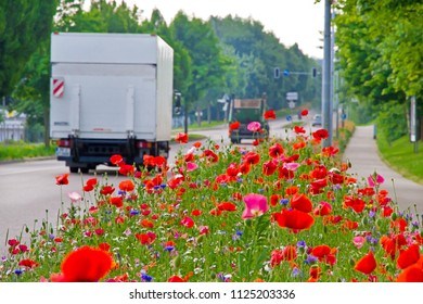 Cars on road with flowers