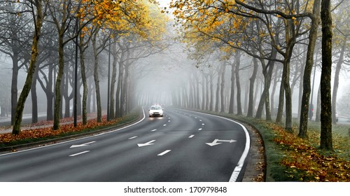 Cars on the road in the fog. Autumn landscape.