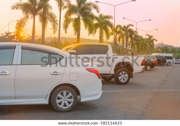Lot of cars parked in outdoor parking lot at a park in the evening time with row of palm trees, sunlight of sunset and beautiful orange sky background