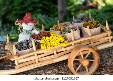 Cart filled with bags of medicinal herbs, with sitting in her scarecrow on the background of the garden.