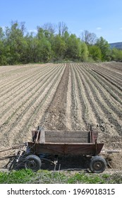Cart used for field work, mehedinti-romania