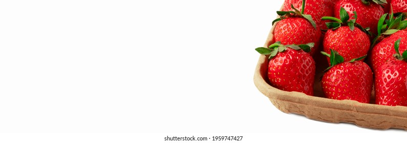 Carton Basket Container With Red Strawberries Isolated. Ripe Strawberry In Brown Punnet Close Up On White Background. Local Fruit Pack Long Banner With Copy Space.