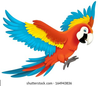 clipart parrot images stock photos vectors shutterstock rh shutterstock com parrot clipart flying parrot clipart pictures