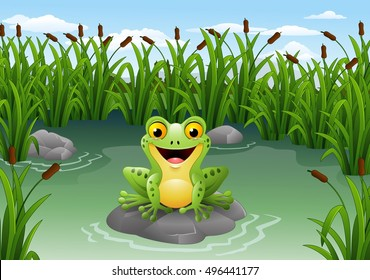 Cartoon frog sitting on the rock at pond
