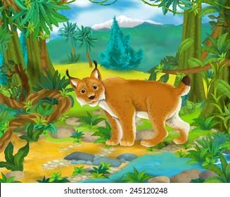 Cartoon scene - wild Asia animals - lynx - illustration for the children