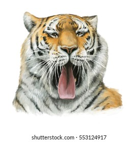 Cartoon tiger - head - illustration for children