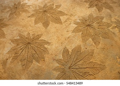 Carved leaf in cement