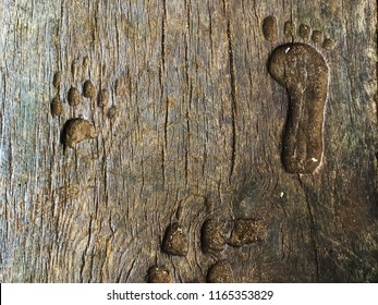 Carved out footprints of a person and a bear and other animals into a wooden block in a forest.