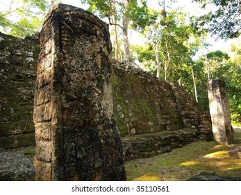 Carved stelae and stone wall at the ancient Mayan ruins of Calakmul, southern Yucatan, Mexico.