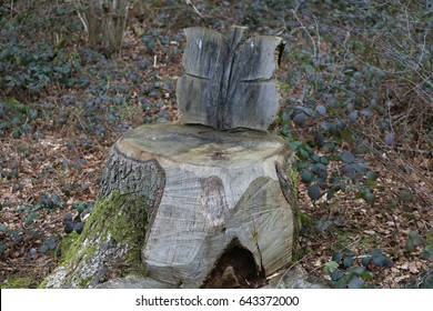 Carved Wooden Chair. Tree Stump Carved Into A Chair In A Forest In England.