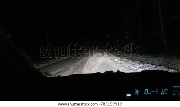 carview night forest