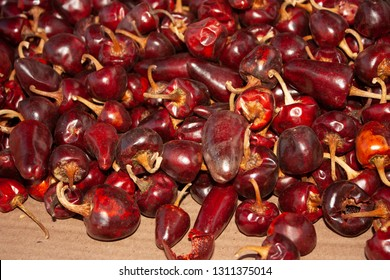 Cascabel chiles used in Mexico as a species to make spicy dishes