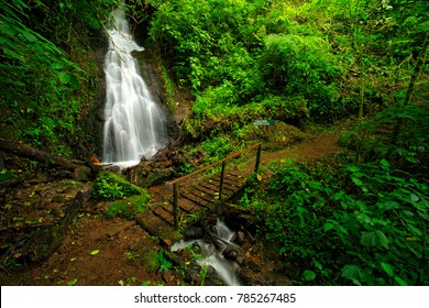 Cascada Bromelias, waterfall Tapanti National park, Costa Rica. Holiday in tropical forest, green tropic forest, Costa Rica. Traveling in mountain cloud jungle. Bridge above wood river stream.