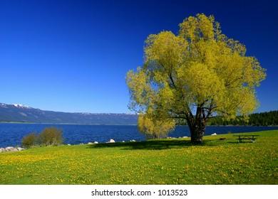 Cascade Idaho