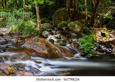 Cascade in the rainforest, Jourama Falls, Paluma Range National Park, Queensland, Australia