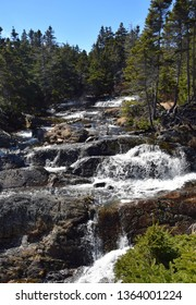 cascade waterfall with heavy water flow in a forest area, Motion river, Torbay Newfoundland Canada