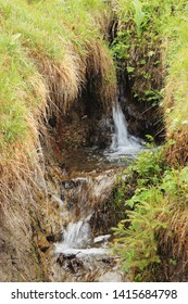 Cascades of cold clear mountain stream in a crevice in alpine meadow. Outdoor. Travel to Switzerland. Selective focus.