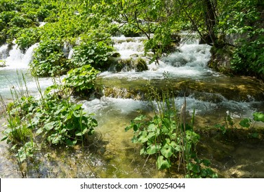 Cascades of small waterfalls among the greenery in Plitvice Lakes National Park in Croatia