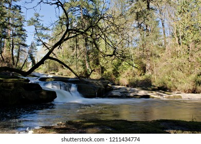 Cascading Millstone River running through Bowen Park in Nanaimo, creating on its way some beautiful small waterfalls on its way out to the ocean, a beautiful landscape photograph.