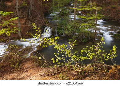 Cascading river and  waterfall in springtime forest. Grza river, Serbia