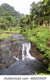 Cascading stream near the Santa Rosa Thermal Spa near Santa Rosa de Cabal in Colombia.