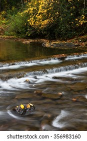 Cascading water and fall foliage in Southwestern Virginia