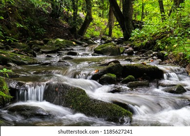 Cascading water over mosey rocks in mountain river surrounded by lush forest; scenic landscape background