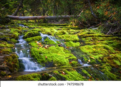 Cascading waterfall over green moss covered rocks in Forillon National Park, Gaspe peninsula, Quebec, Canada.