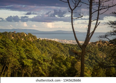 Cascais town and Atlantic ocean view from the forest in Sintra hills