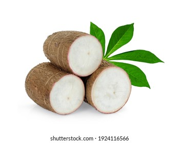 cassava with leaf isolated on white background