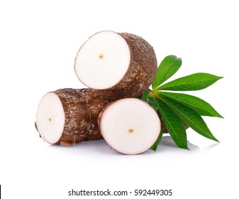 Cassava and cassava leaf isolated on a white background