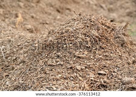 Cassava Waste Agriproduct Processing Establishment Stock