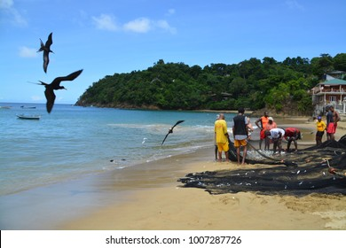 CASTARA, TOBAGO. NOVEMBER 10, 2017:  The process of typical fishing on Tobago. Fisherman crew just pull in the net on shore and need to pack out the catch on November 10, 2017 in Castara.