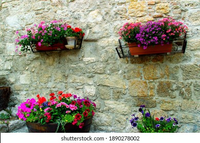 CASTEL TROSINO, ITALY - CIRCA JULY 2020: Colorful flowers in Castel Trosino. This place is also known for the discovery of a complex of Lombard tombs, datable between the fifth and seventh centuries