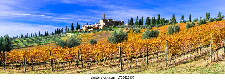 Castello di Banfi and golden vineyrds. Tradtional Tuscany countryside. famous wine region of Italy