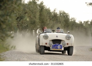 CASTELNUOVO BERARDENGA (SI), ITALY - SEPTEMBER 20: A white Triumph TR2 takes part to the GP Nuvolari classic car race on September 20, 2014 in Castelnuovo Berardenga (SI). The car was built in 1955