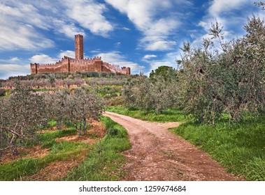 Castiglion Fiorentino, Arezzo, Tuscany, Italy: the medieval castle of Montecchio Vesponi in the country with olive tree groves
