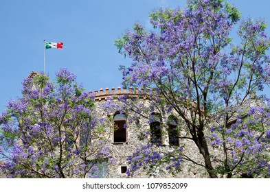 Castle, blooming jacarandas and Mexican flag