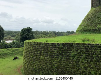 Castle covered with green grasses at gokarna India